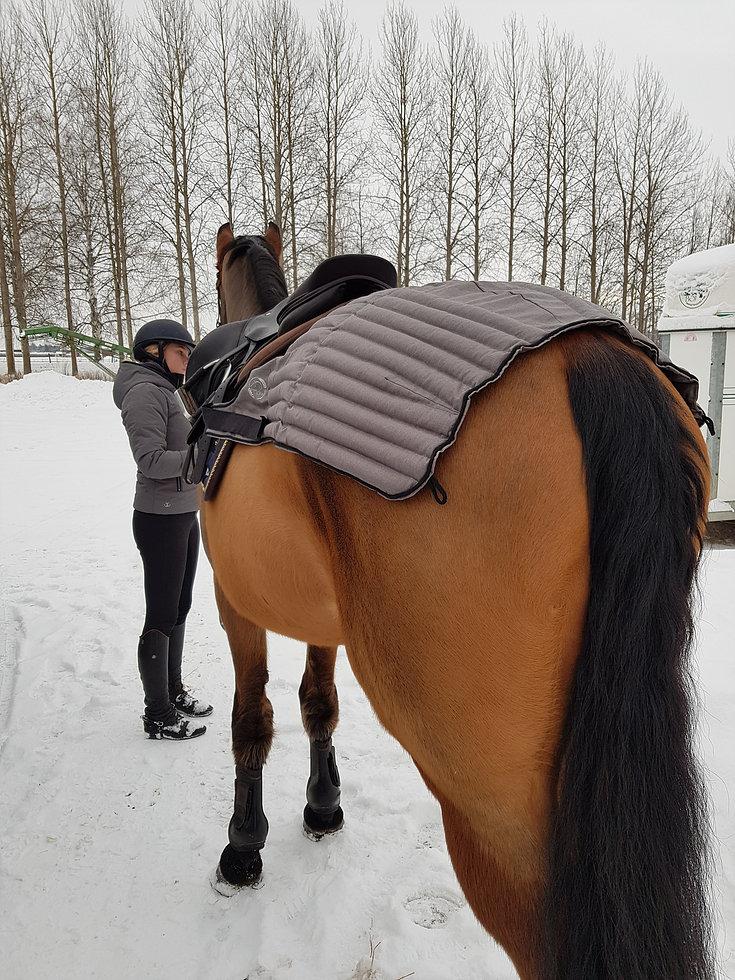 Ergonomiskt anpassad vetevärmare för häst och hund